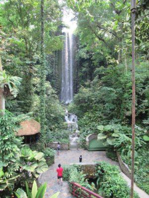 Waterfall Aviary