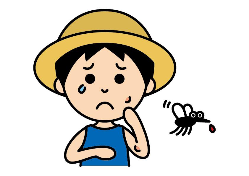 【21年最新情報】シンガポールのデング熱。感染者最多の20年の死亡者は、コロナを上回る。流行期を前に注意を