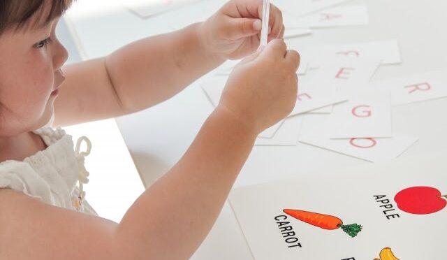 ローカル、インター、日系、それぞれの幼稚園の特徴とメリットについて、シンガポールの教育事情を徹底解説