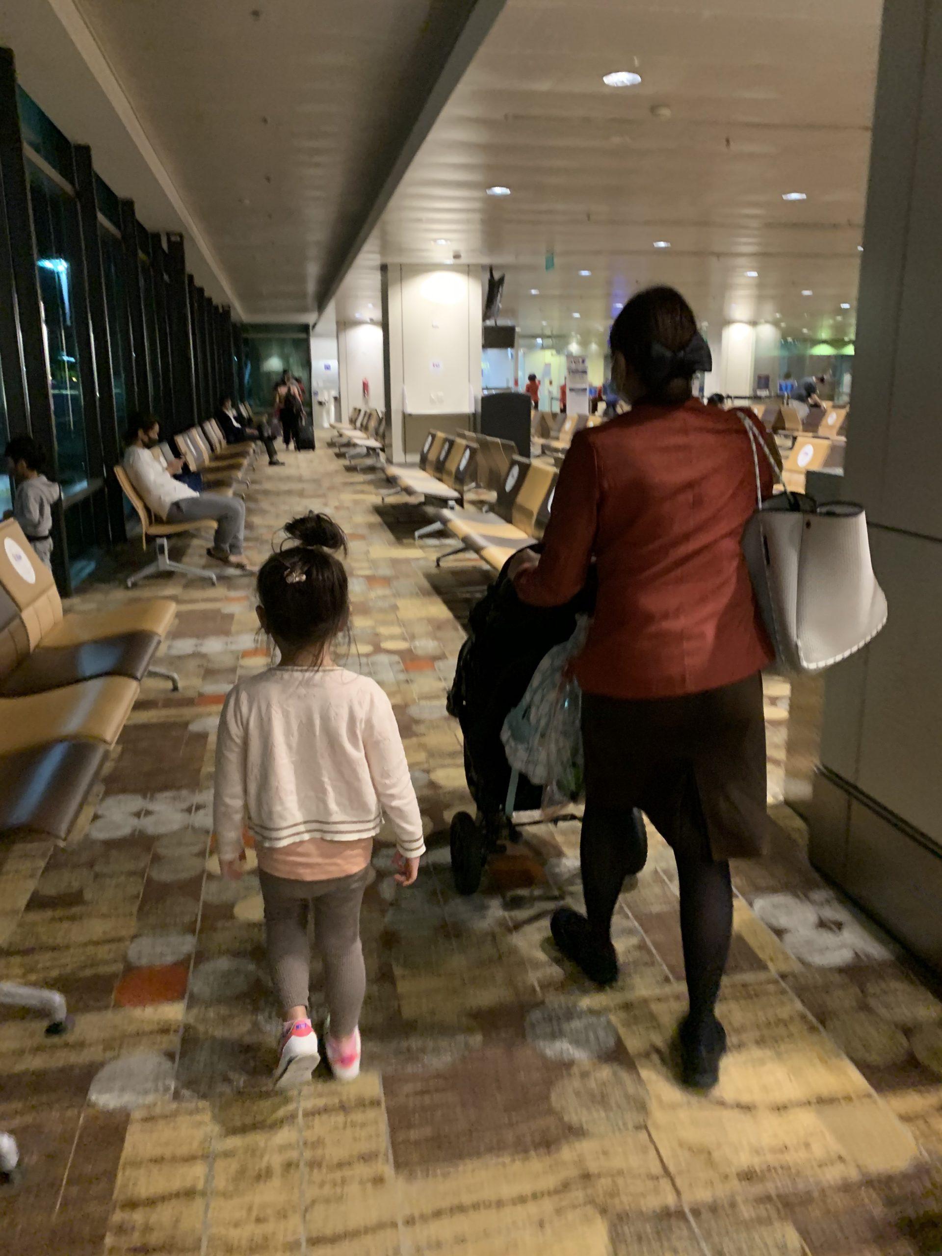 入国 人 シンガポール 日本