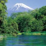 <利き酒キャンペーン実施中>日本酒版「ボトルショック」!?静岡酵母が生んだ吟醸王国・静岡。